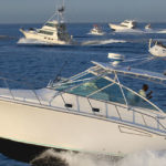 sport fishing in los cabos